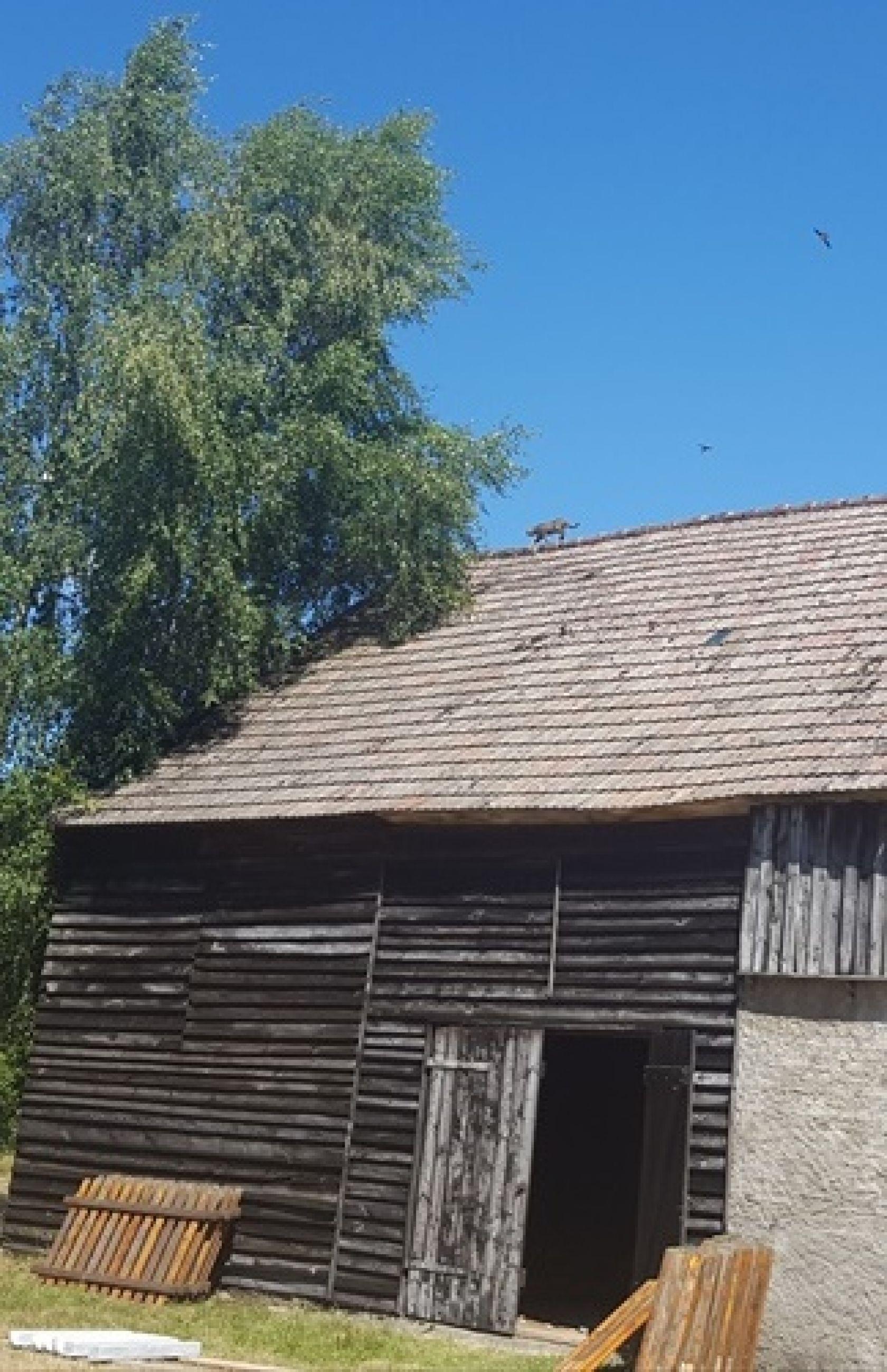 Montaż drewnianego ogrodzenia na słupkach drewnianych